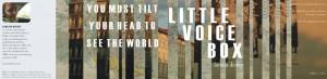 dickey_little voice box